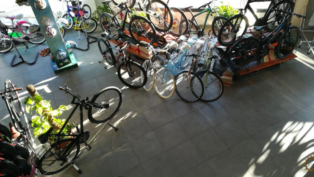 area espositiva negozio cicli coste